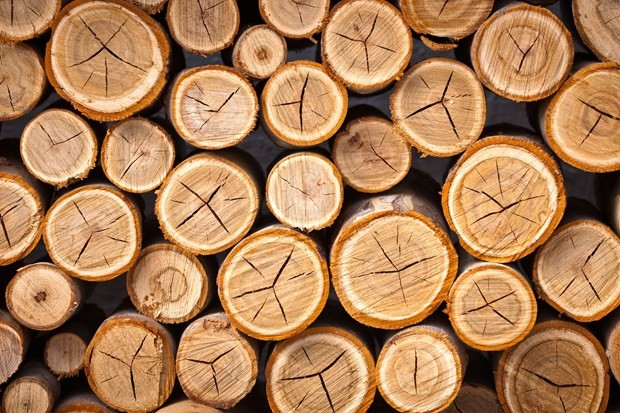 ghế xếp gỗ